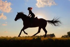 Letsel bij paardrijden